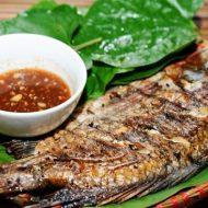 Cách Làm Cá Rô Phi Nướng Sả Ớt Thơm Nức Mũi